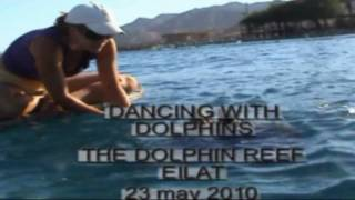 dancing with dolphins.avi