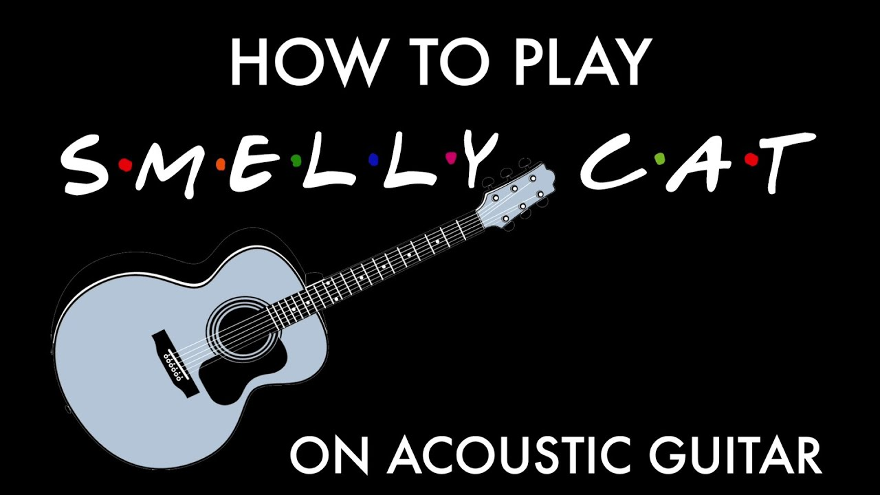 Friends   The Reunion 'Smelly Cat'   How to play on acoustic guitar