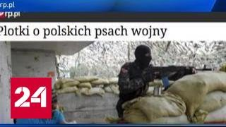 Польские женщины-снайперы воюют на Украине