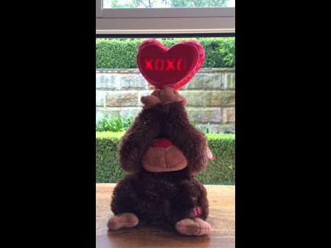 Singing Monkey - Valentine's Day