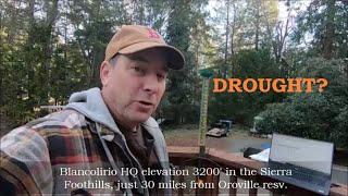 Oroville/Northern California Update, No Rain. Drought?