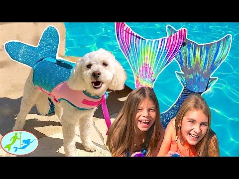 THE MERMAIDS swimming in the pool with MER DOG PIPPY BOOM BOOM | Theekholms