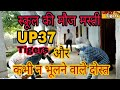 UP37 Tigers || desi School story || funny school story || college best friends || old story is best
