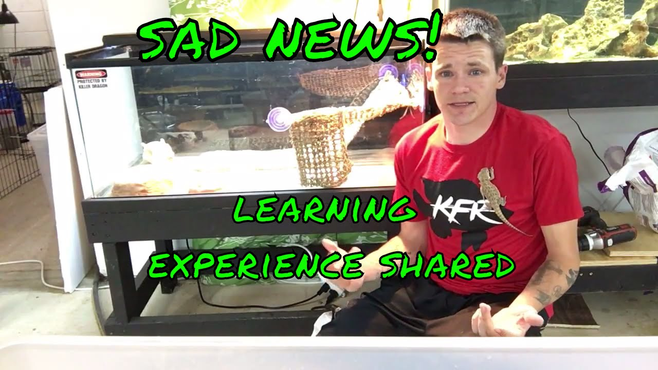 bad learning experience Experiential learning is a well-known model in education kolb's experiential learning theory (kolb, 1984) defines experiential learning as the process whereby knowledge is created through the transformation of experience knowledge results from the combination of grasping and transforming .