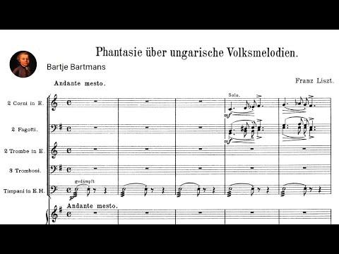 Franz Liszt - Hungarian Fantasy 1852 (René Duchâble}