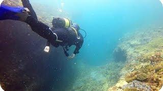 CORAL REEF RESEARCH   Madagascar (Travel Vlog)