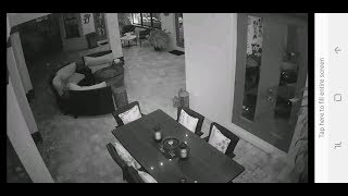 Trivision Wireless Security Camera