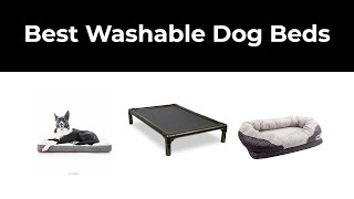 Best Washable Dog Beds in 2020