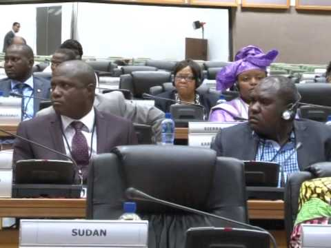 PAN African Parliament on Peace and Security