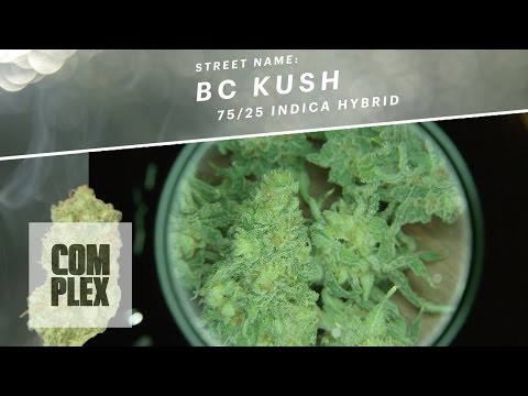 Motor City High: BC Kush Marijuana Strain | Ep 6 On Complex