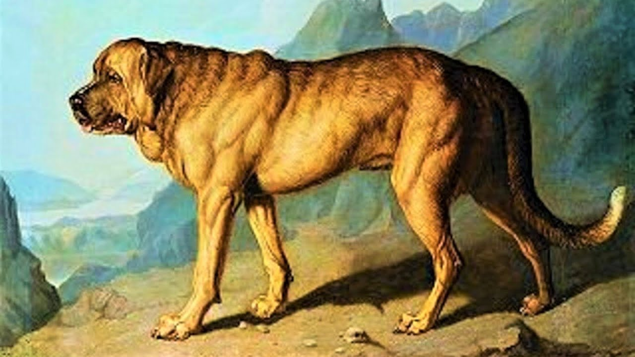 Extinct Dog Breeds That You Never Knew