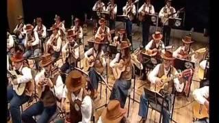 El Condor Pasa - Orquestra Paulistana de Viola Caipira.wmv