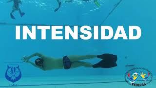 VIDEO INSTITUCIONAL - FEDERACIÓN COLOMBIANA DE ACTIVIDADES SUBACUÁTICAS - FEDECAS