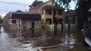 See flooding in New Orleans at Canal St and Carrollton Avenue