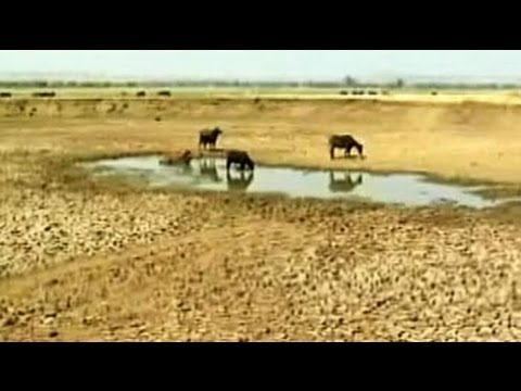 Truth vs Hype: Maharashtra - Drought by design