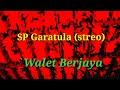 Suara Panggil Walet Sp Garatula Stereo  Ampuh Pikat Walet  Mp3 - Mp4 Download