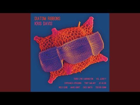 Diatom Ribbons (feat. JD Allen & Tony Malaby) Mp3