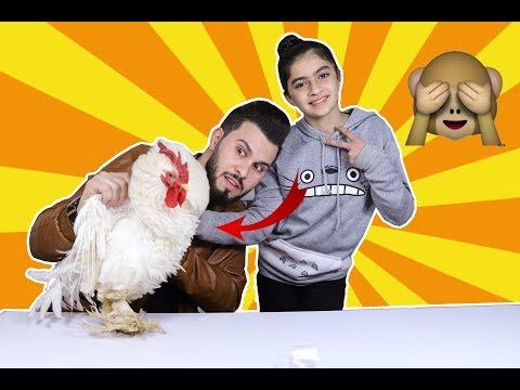 تحدي ايش في الصندوق !!!  دجاجة في بيتنا !!
