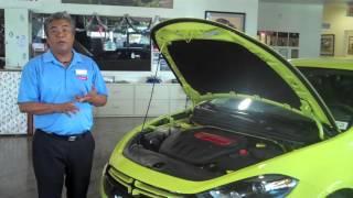 Cutter Dodge Pearl City 2013 Dart Walkaround
