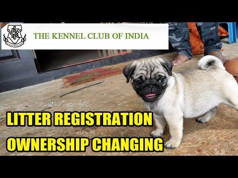 Ownership Changing of a dog I  litter registration I Dog registration I money making business