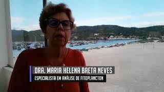 Dra. Maria Helena Baeta Neves - Especialista em Análise de Fitoplancton