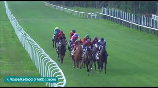 Vidéo de la course PMU PREMIO BAR PADDOCK