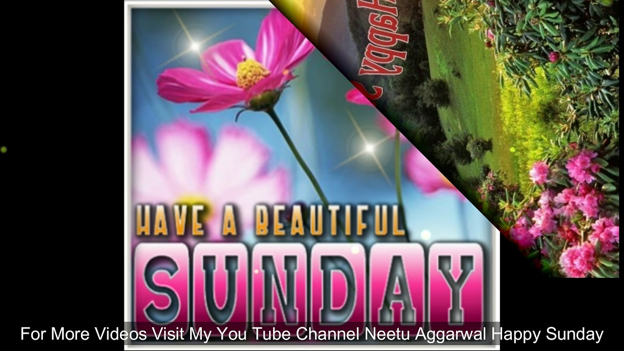 Happy Sunday,Wishes,Greetings,Sms,Sayings,Quotes,E-card