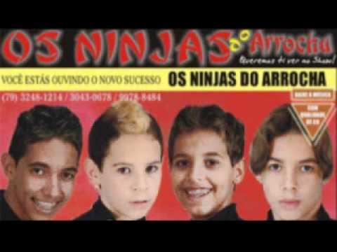 cd dos ninjas do arrocha