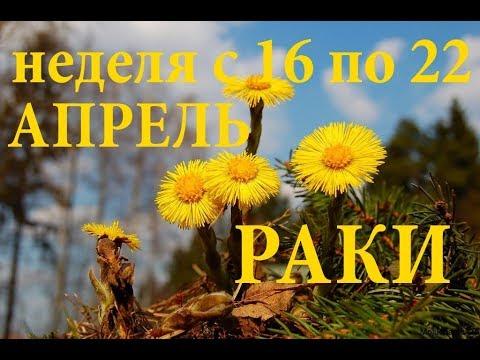 РАКИ. ПРОГНОЗ на НЕДЕЛЮ с 16 по 22 АПРЕЛЯ 2018г.