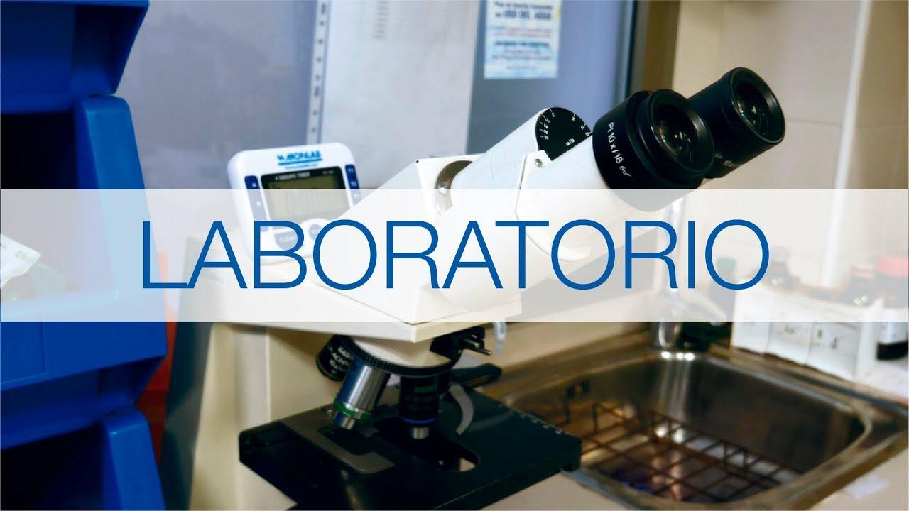bologna para laboratorio de análisis de próstatas