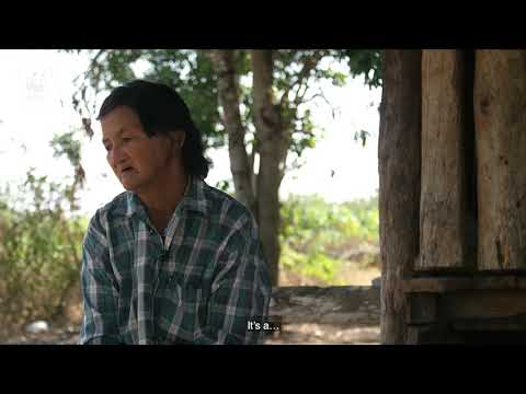 Reducing human elephant conflict in Thailand