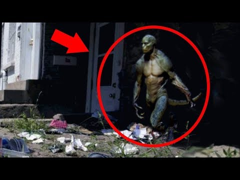 5 Reptilians Caught on Tape
