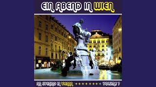 Strauss: Du Und Du / the Blue Danube (Reprise) / Morning Papers Waltz / Die Fledermaus Waltz
