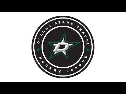 DSTHL Game #7: Dallas OILERS vs. Houston WILD