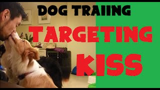 "Dog Training - Targeting ""kiss"""