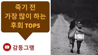 #89 죽기 전 가장 많이 하는 후회 TOP5[감동그램]