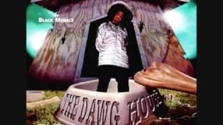 J-Dawg - Set It Off Feat. Insane