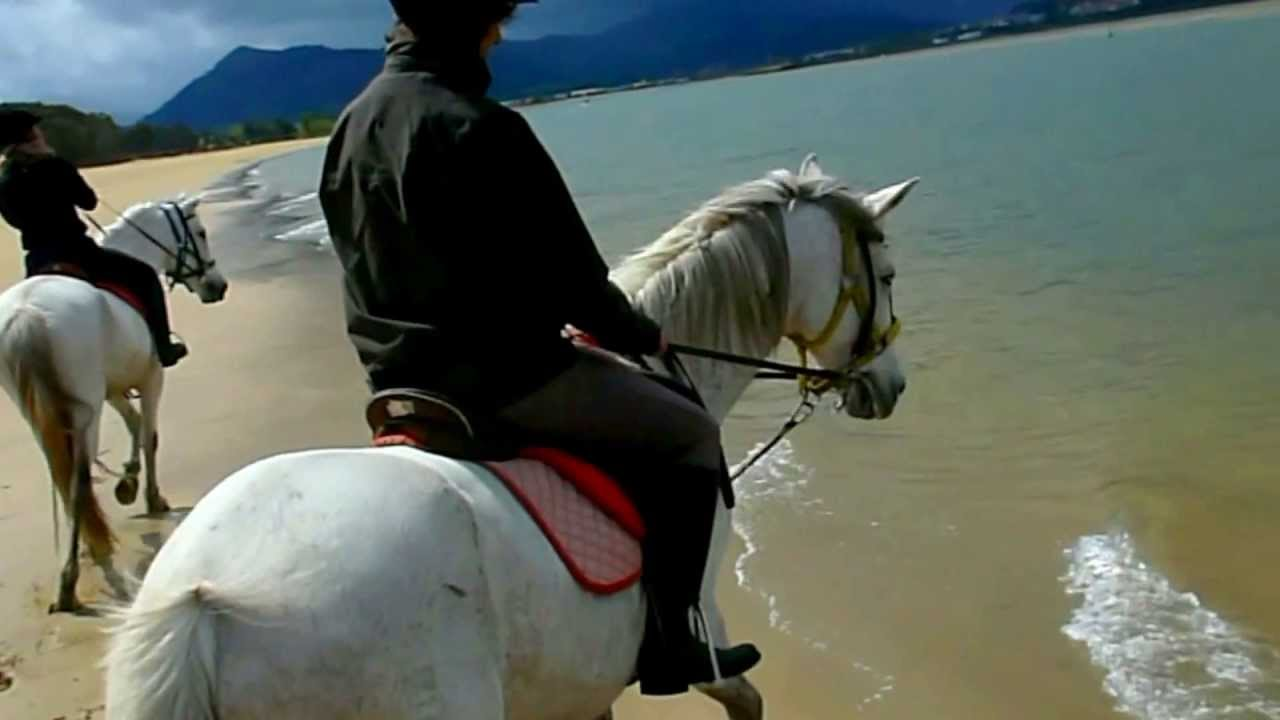 Laredo El Sable Paseo Y Galopes A Caballo Por La Playa Cantabria 2013 Youtube