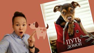Путь Домой моя верная собака// A dog's way home 2019//Путь домой 2019