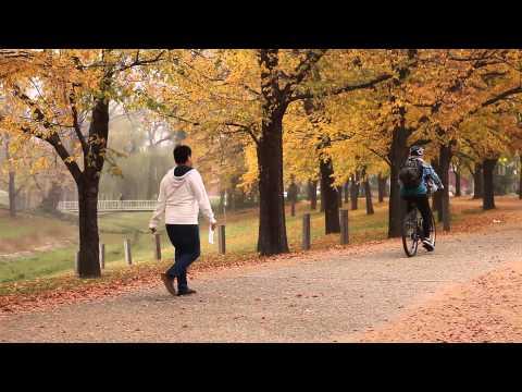 Last Days of Autumn at ANU