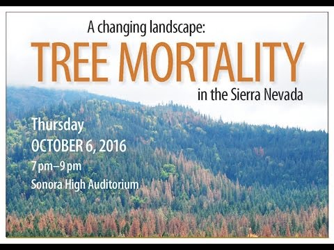 Columbia College Foundation Lecture on Tree Mortality - October 6, 2016