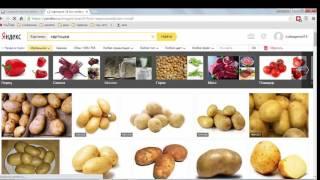 Уроки Яндекс Директ - Початок. Як налаштувати директ, робота через excel
