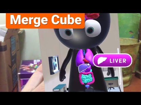 Mr. Body for Merge Cube – Human Anatomy for Kids in AR