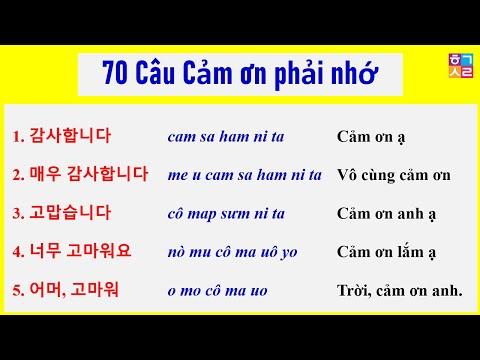 70 Câu Cảm Ơn Tiếng Hàn Buộc Phải Nhớ Khi Giao Tiếp. Học 1 Lần, Dùng Cả Đời