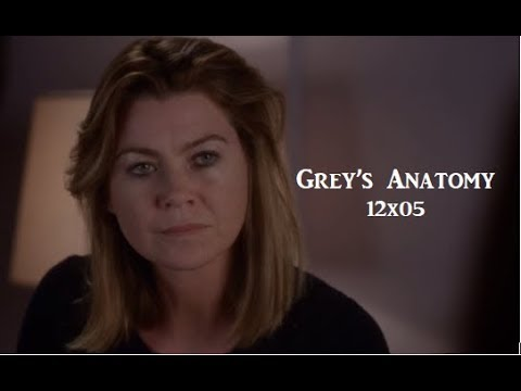 Greys Anatomy Tireur Saison 6 Dailymotion Video