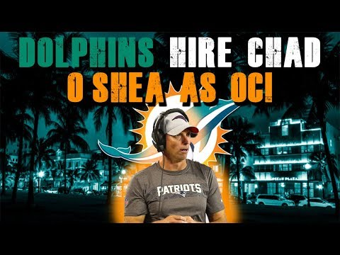 Breaking News!! Miami Dolphins To Hire Chad O'Shea As OC!!