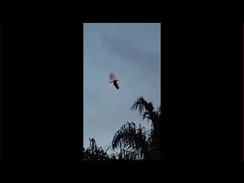 UFO 2017. Creepy UFO Sightings Over Oxnard, California