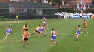 Round 12 Development Highlights vs Box Hill
