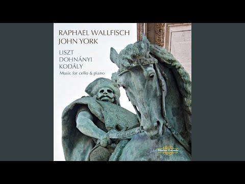 Sonata in B-Flat Major, Op. 8: I. Allegro man non troppo