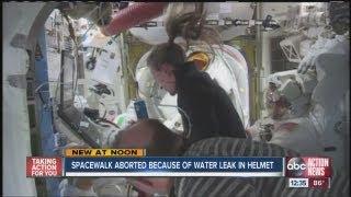 NASA aborts ISS spacewalk due leak